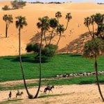 В Африке обнаружен положительный эффект глобального потепления