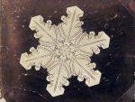 Первые в мире фотографии снежинок выставлены на продажу