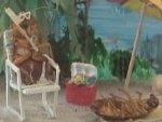 Экспонаты музея тараканов. Кадр телеканала Fox.